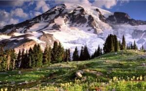 Vzpon na goro Mount Rainier