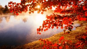 Lepa jesen